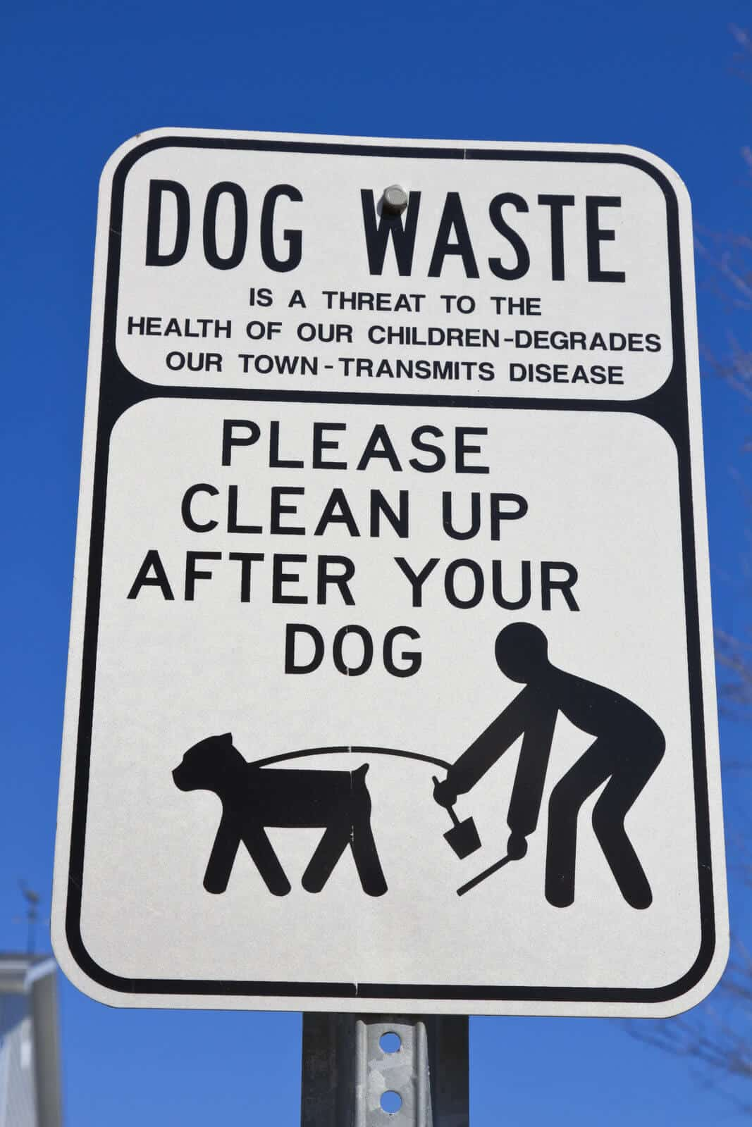 Your pet's business is your business- the importance of poop bags