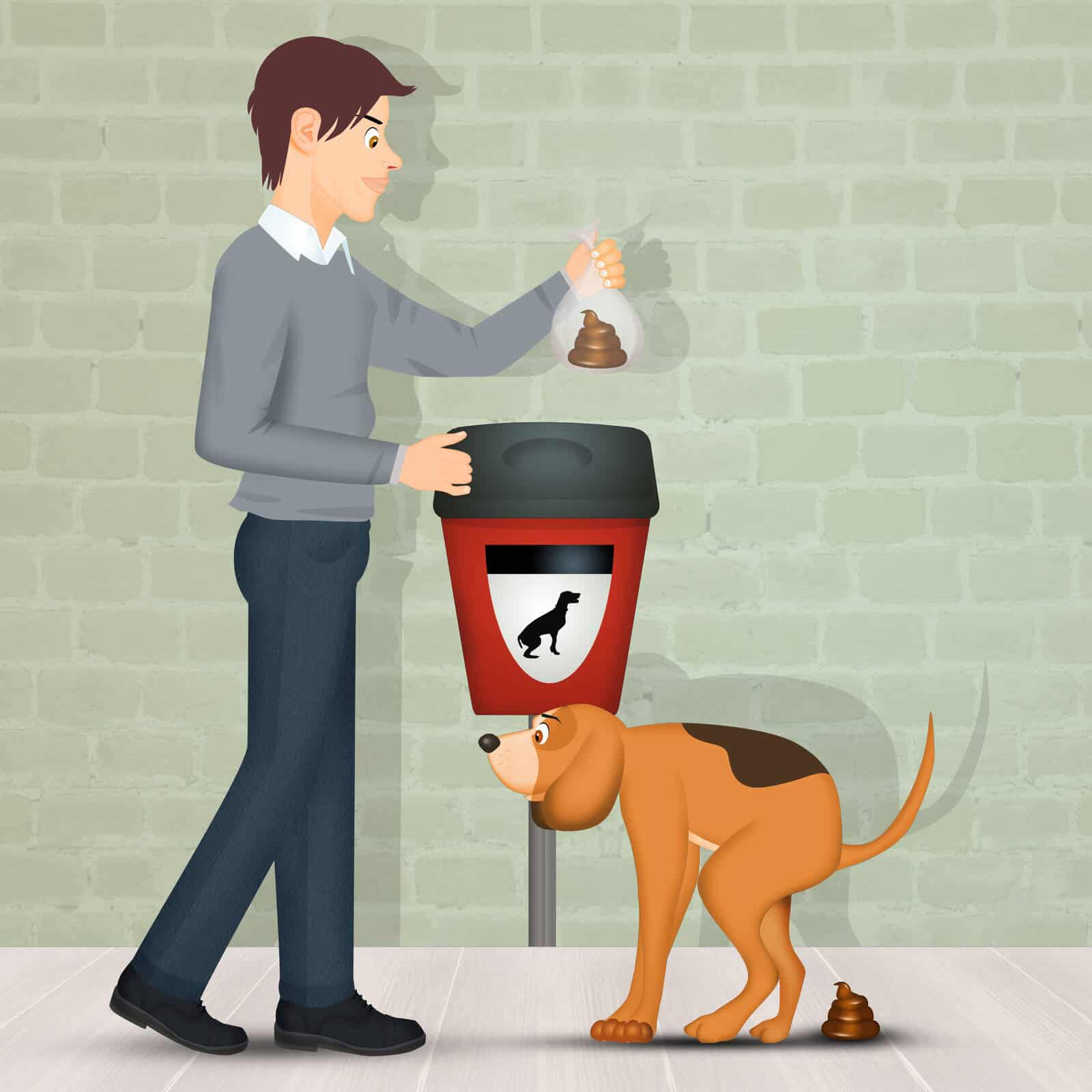 Everything you need to know about dog poop bags
